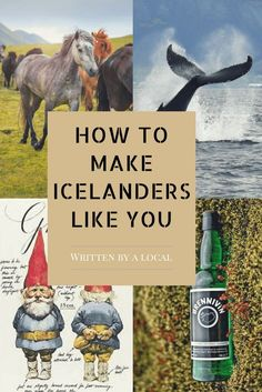 10 tips on how to make Icelanders like you. Read about how to get the locals in Iceland to make you feel more welcome when travelling in Iceland.