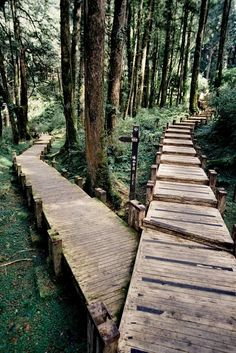 Two roads diverged in a wood, and I— I took the one less traveled by, And that has made all the difference. -Robert Frost