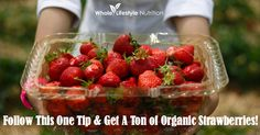 Follow This One Tip and Get a Ton of Organic Strawberries! (From Whole Lifestyle Nutrition) #gardening #lifehack