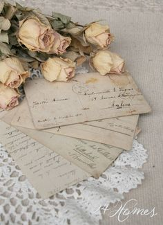 Dried Blush Cream Roses and Vintage Love Letters Rotulação Vintage, Amor Vintage, Vintage Books, Old Letters, Paper Letters, Writing Letters, Handwritten Letters, Vintage Lettering, Old Postcards
