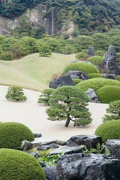 contre jardin japonais zen arbres bonsaï