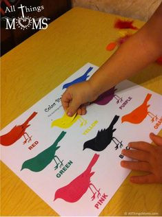 Free Printables- Color Birds Matching game! Would be great for a busy book