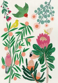 Roger la Borde Australian Flora and Bird life card illustrated by Kate Pugsley Butterfly Illustration, Floral Illustrations, Illustration Art, Australian Native Flowers, Australian Art, Flower Mural, Flower Art, Kate Pugsley, Guache