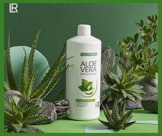 Aloe Vera ital Sivera a tisztítókúra Aloe Vera Gel, Fitness Models, Cool Woodworking Projects, Health And Beauty, Vodka Bottle, Drinking, Perfume, Personal Care, Instagram