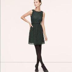 Loft Green Lace Holiday Dress