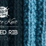 Seeded Rib Stitch  perfect for manly scarves, afghans, or even hats