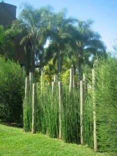 Oda al Verde, diseño y ejecucion: cerco de postes, herbaceas y arbustos, cerca del río y amarras, Tigre