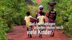 i0.wp.com www.rettediewelt.de wp-content uploads Kinderarbeit.png