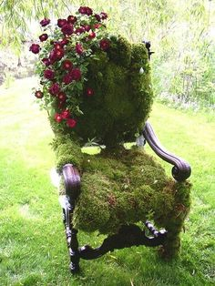 Clematis and moss chair.  What a surprise it would be to find this in a garden!  Fairy chair, or just a forgotten old chair left from a garden party...  Living art... lovely!
