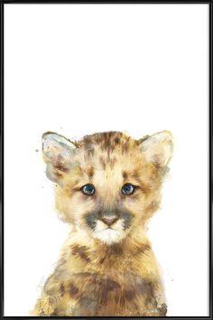 Little Mountain Lion en Affiche sous cadre standard   JUNIQE