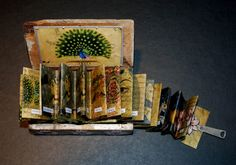 INDIA with the accordion book open.