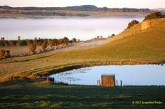 Mist over Omapere Lake, Okaihau, Northland Mists, Monument Valley, Culture, Mountains, Pictures, Travel, Photos, Viajes, Destinations