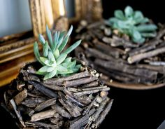 DIY Stick Planter / Crafted in Carhartt