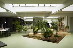 green office - Buscar con Google