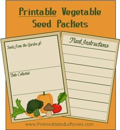 How to collect seeds, dry seeds, and store seeds. Includes free Printable Vegetable Seed Packets.