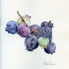 Blueberries Original Painting Fuits Watercolours Wall Art
