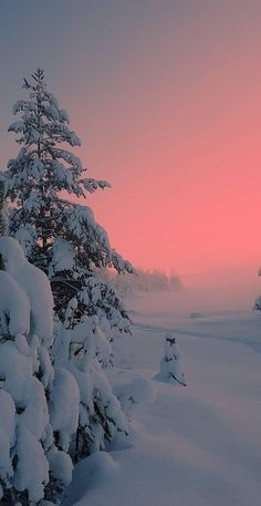 Winter Photography, Landscape Photography, Nature Photography, Photography Pics, Wallpaper Natal, Nature Wallpaper, Winter Scenery, Winter Sunset, Winter Pictures