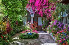 THE GARDEN PATIOS OF CORDOBA, SPAIN / http://hadleycourt.com/the-garden-patios-of-cordoba-spain/