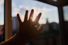 🌈 New free photo at Avopix.com - sun rays hands shadow     ☑ https://avopix.com/photo/17569-sun-rays-hands-shadow    #black #sun rays #people #hands #shadow #avopix #free #photos #public #domain
