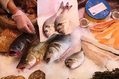 Fresh fish, seafood and caviar. Caviar, Seafood, Fish, Sea Food, Ichthys, Seafood Dishes
