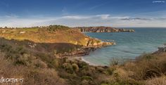 Had to make the decision wether to go Christmas shopping or stroll along the cliffs & head down the path to Saints Bay on this beautiful crisp Saturday afternoon? #NoBrainer #Guernsey #GreatThings  Link to the whole collection of 'Georgie's Guernsey' :-http://chrisgeorge.dphoto.com/#/album/4daaes  Picture Ref: 12_12_15 — in Guernsey.