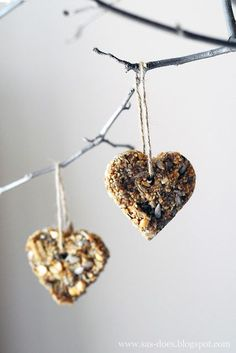 All natural, no suet, bird seed ornaments! So easy and cute! Yay DIY!