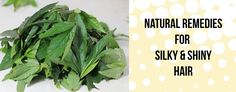 Natural Remedies for Silky & Shiny Hair