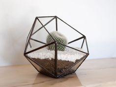 Terariu din sticla / Icosaedru pentru plante / obiect decorativ handmade