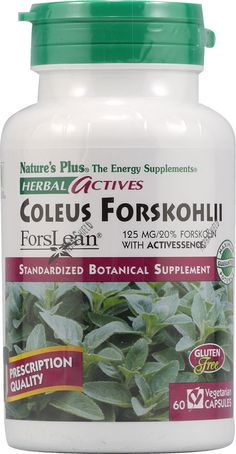 Dr. Oz says -Supplement to Break Down Fat: Forskolin  Research has found that forskolin can help to promote the breakdown of stored fats in fat cells. It may also release fatty acids from adipose tissue, which results in increased thermogenesis, resulting in loss of body fat and, theoretically, increased lean body mass. Dose: Take 125 mg in the morning. Get the right dose by looking at the label. It must read that it is standardized to 20% forskolin.