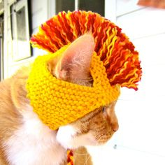Cat Hat Costume - Yellow, Orange, and Red Mohawk. I will be investing in some of these very soon!!!!!
