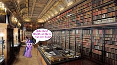 Welcome To Twilight's Library by Macgrubor.deviantart.com on @deviantART