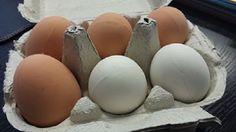 Original felicitación de Navidad. Huevos de goma que los de Bilbao usan para felicitar cuando les sale de los huevos.