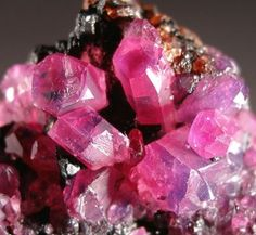 rubies ~ perfectly coloured......