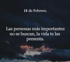 Las personas más importantes no se buscan, la vida te las presenta.
