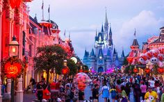 Walt Disney World can be a dream vacation destination for families, couples and friends alike—but visiting this Orlando-based theme park without knowing the lay of the land is challenging.