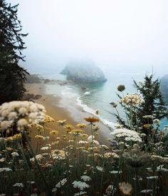 Beautiful world. Beautiful world. Landscape Photography, Nature Photography, Travel Photography, Photography Flowers, Photography Tips, Photography Backdrops, Digital Photography, Mother Earth, Mother Nature