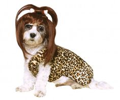 Turn your dog into a Cave Woman with this leopard costume and brown wig with a bone in the top knot. Its a winning Halloween Costume if I ever saw one! Limited Quantity.