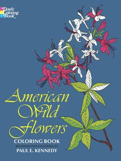Learn to identify 46 of the most important wildflowers, from Rickett's collection — lady's slipper, black-eyed susan, bird's foot violet, cardinal flower, pitcher plant, trout lily, others.