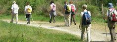 La cooperativa Incia e il Geb Bibbiano, in collaborazione con il Centro di Educazione Ambientale della Val d'Enza del Comune di Bibbiano e ReggioGas ,organizzano il Corso base di Nordic Walking