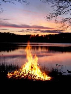Midsummer bonfire against a pink and violet horizon in Sweden.
