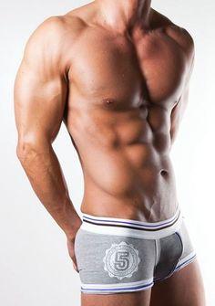 Best Selling Wholesale/Retail Mens Underwear Boxers Cotton Cueca Boxer Men Print Boxer Shorts shipping(N-084)