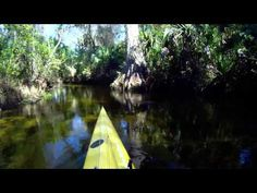 Juniper Springs. Great video made by a kayaker!! This is awesome.