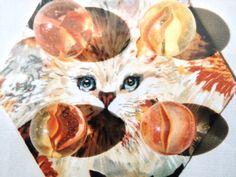 "Marble King 1"" Hybrid CAT'S-EYE MARBLES"