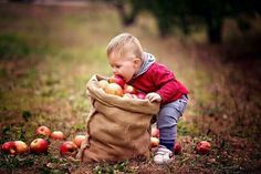 Most Popular fall baby pictures kids ideas Outdoor Family Photography, Autumn Photography, Children Photography, Apple Orchard Photography, Fall Baby Pictures, Fall Family Photos, Cute Kids, Cute Babies, Little Girl Photos