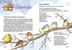 Mozaik Kiadó - Olvasókönyv 2. Feeding Birds In Winter, Amazing Nature, Bird Feeders, Kindergarten, Poems, Language, Science, Album, Education