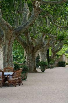 Habitually Chic® » Pretty in Provence