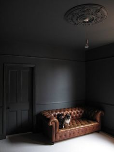 Farrow & Ball Down Pipe (ceiling too) - looks great with the saddle brown…