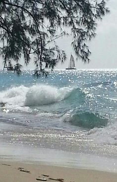 Beach Living / Barbados, sparkle on the ocean on imgfave Sea And Ocean, Ocean Beach, Ocean Waves, Water Waves, No Wave, I Love The Beach, All Nature, Jolie Photo, Beach Scenes