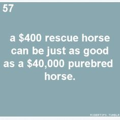 So true, I bought my horse for $500 and has turned out to be the best show horse. So much talent! A true diamond in the rough :)