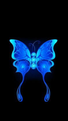 Butterfly Wallpaper, Butterfly Flowers, Beautiful Butterflies, Cool Pictures For Wallpaper, Cool Wallpaper, Dark Backgrounds, Wallpaper Backgrounds, Iphone Wallpapers, Simply Beautiful